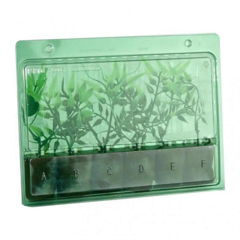 Versandbox für Stecklinge 6 Plätze - 243x185x40mm